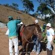 gedc0187 - 1º Trekking Pedra Invejada (16 e 17/07/2011)